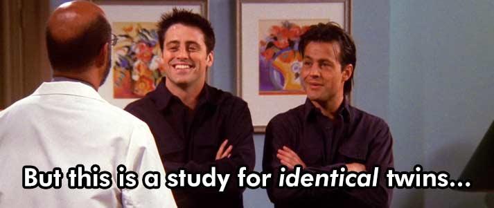 amis jumeaux identiques étude