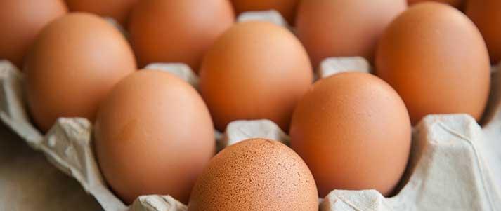 Boite d'œufs